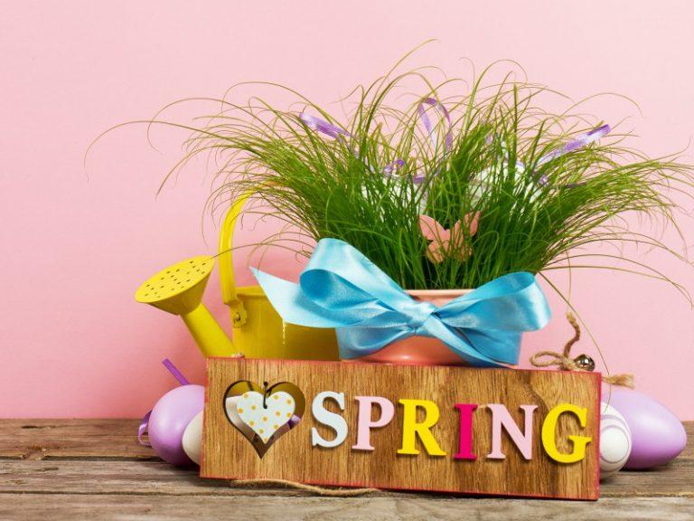 primavera delle associazioni