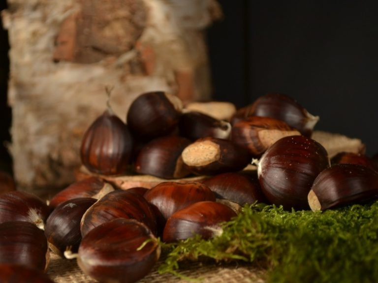 chestnuts-castagne
